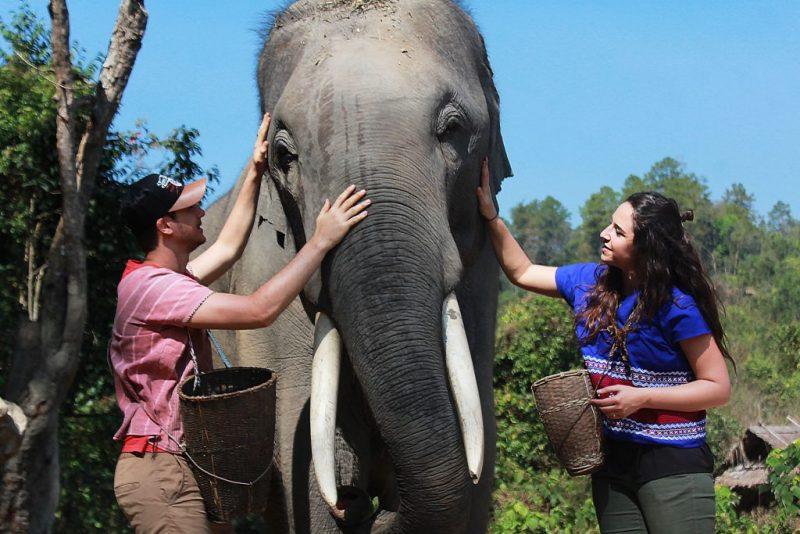 karens tribe native elephants