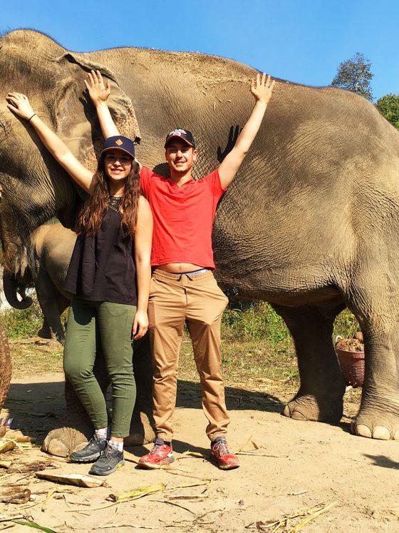 Karens Tribe native elephants health easier